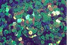 Пайетки в виде цветка, Индия, Green, 5 мм